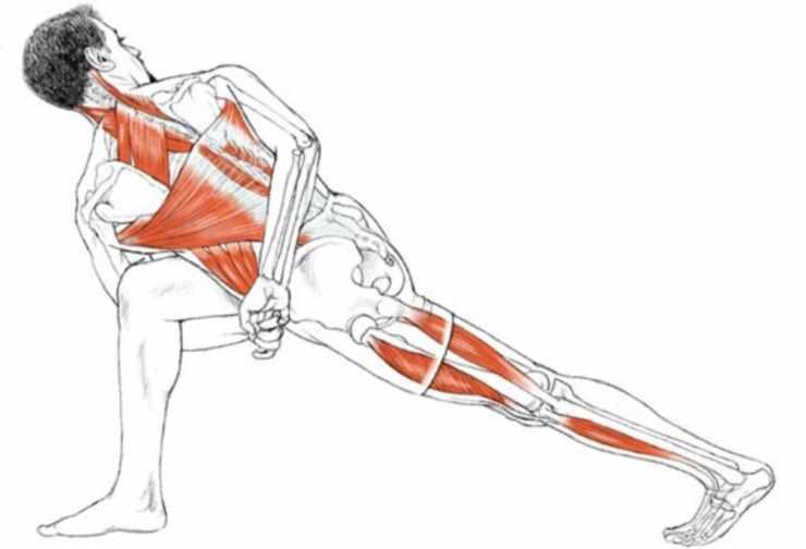 """Схема задействования мышц при выполнении позы """"Скручивание"""""""