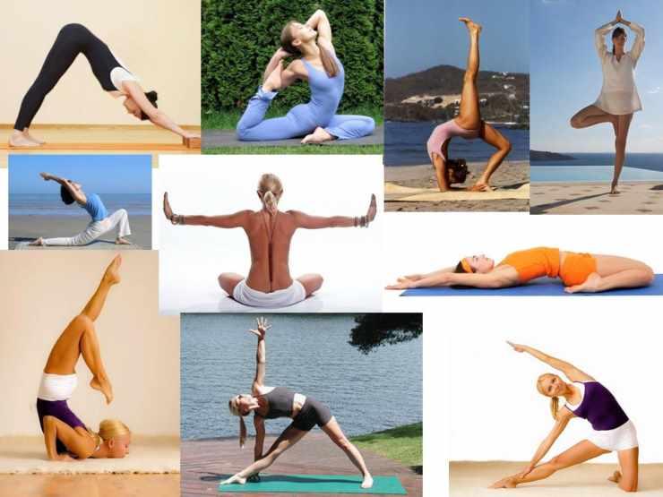 Основные асаны фитнес-йоги