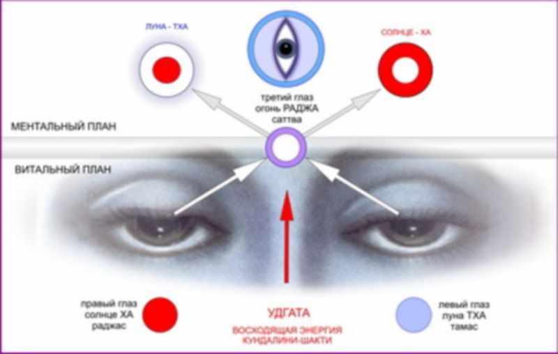 Упражнения для глаз - комплекс Раджа-йога