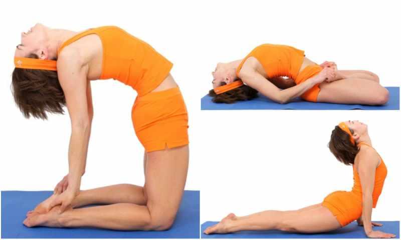 Фото упражнений для растяжки спины