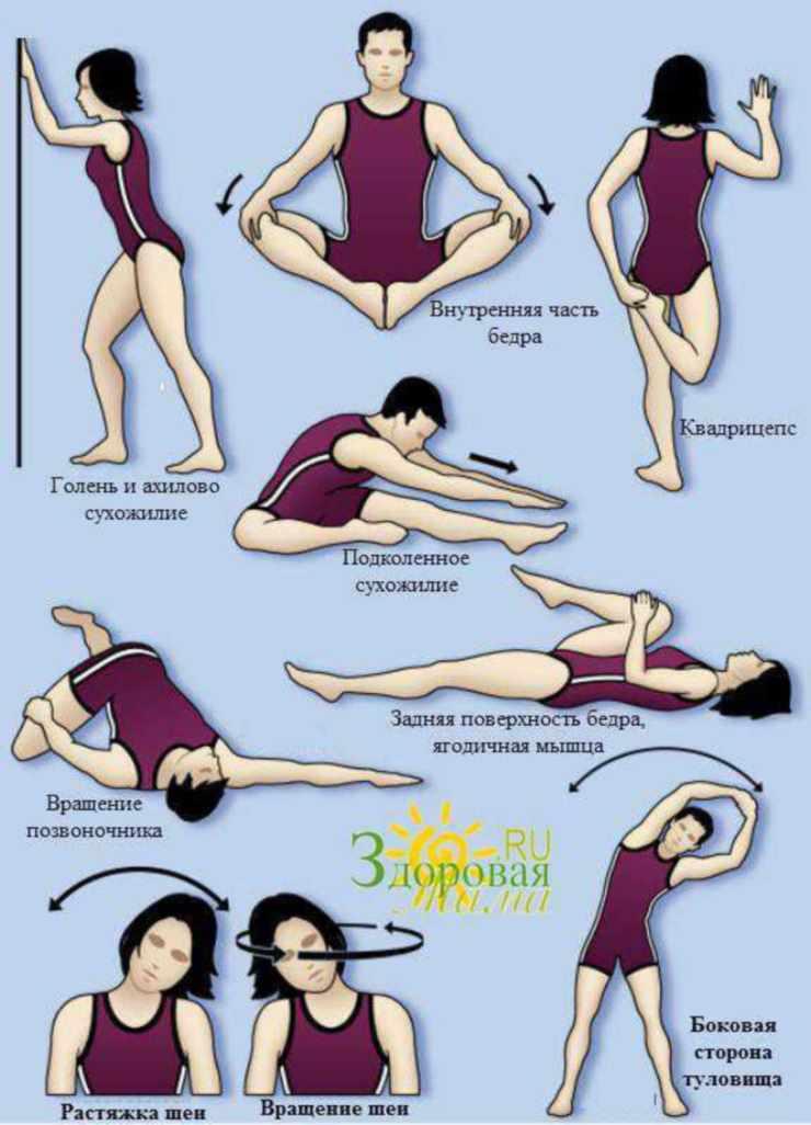 Пример упражнений для ног и спины