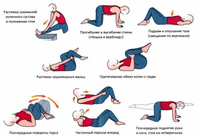 Схема упражнений для растяжки спины