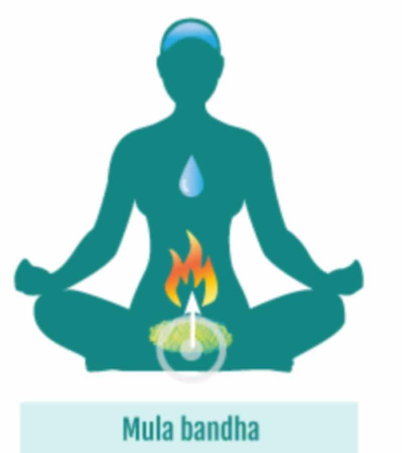 mula-bandha-ehnergeticheskii-zamokулабандха -женская и мужская энергия
