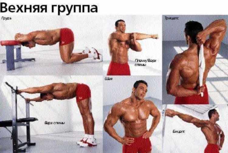 Упражнения на растяжку в бодибилдинге
