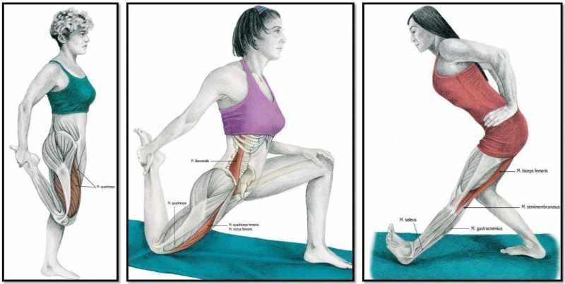 Растяжка ног после тренировки