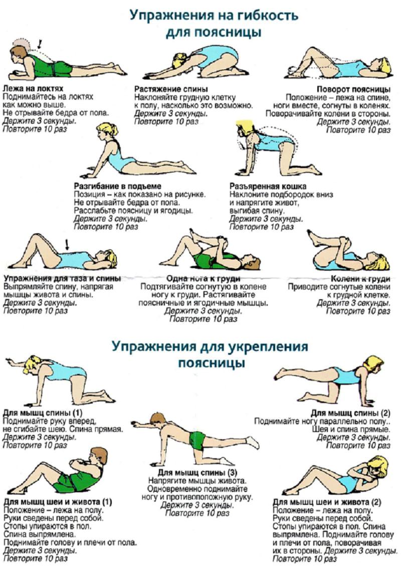 Упражнения для укрепления поясницы