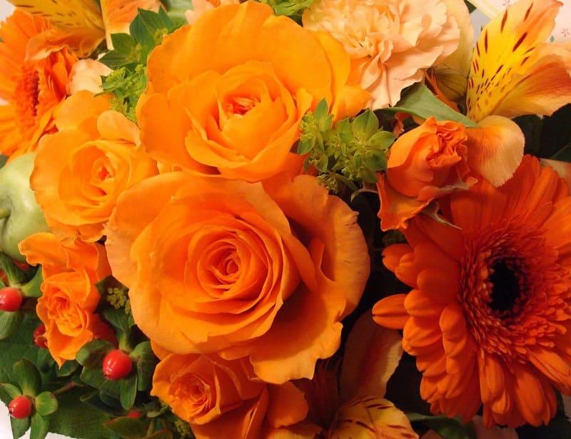 Оранжевый - цвет женской чакры свадхистана